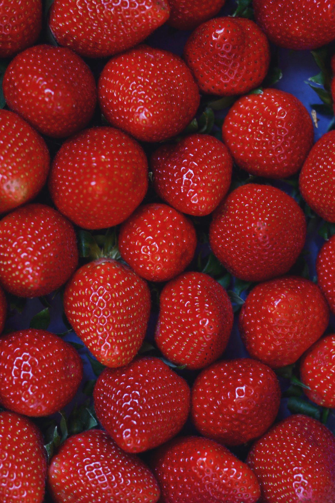 Råmarineret rabarber og jordbær med vanilje og honning